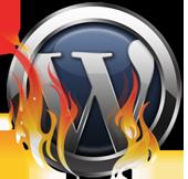 Att gå en WordPresskurs gör så att du kan utnyttja plattformens potential fullt ut